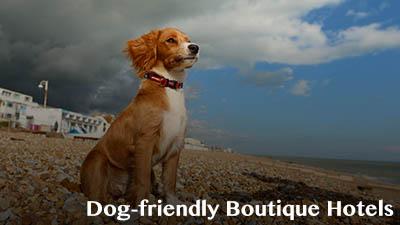 Dog Friendly Boutique Hotels